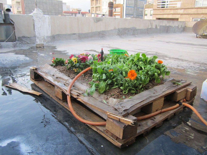 Flower-roof