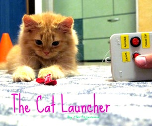 The Cat Launcher - Energetic Cat's Workout Toy or Just a Lazy Owner