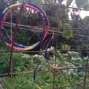 Rainbow Jewel
