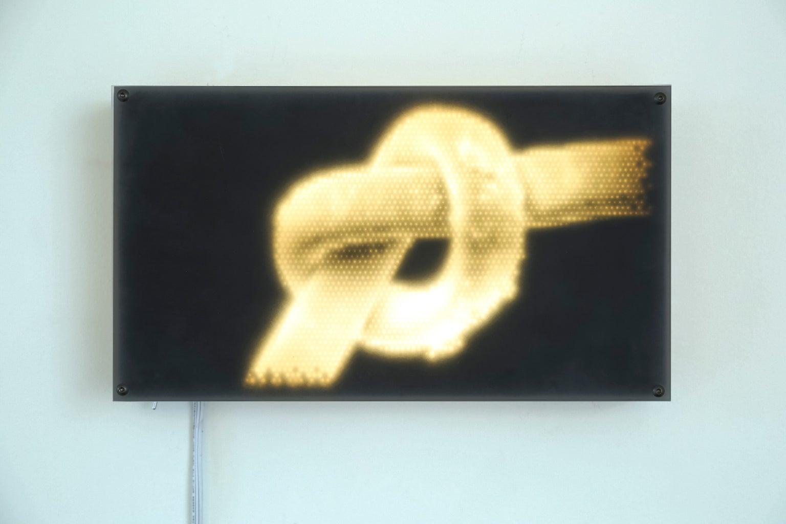 """Human Hair"" Light Panel Series #2"