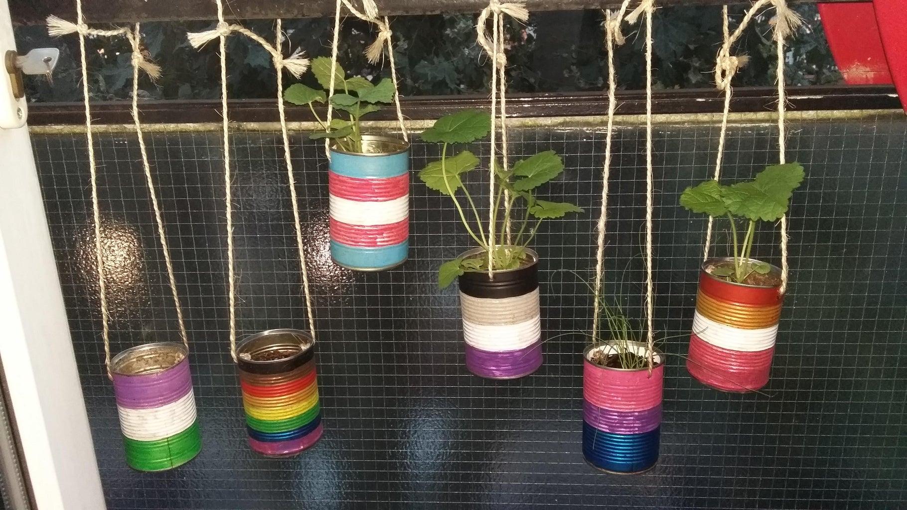 Start a Garden From Scratch From Scraps