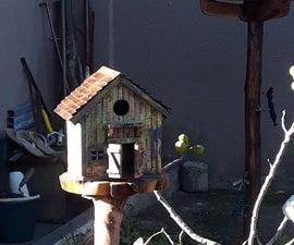Bird House - Casa De Passarinho