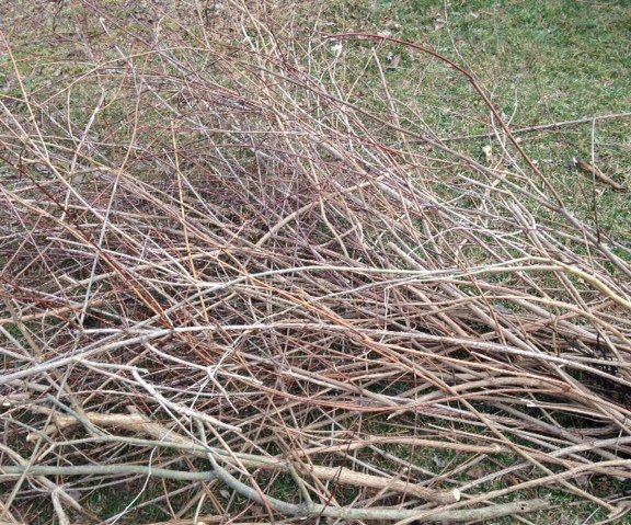 Pruning Cleanup Made Easier