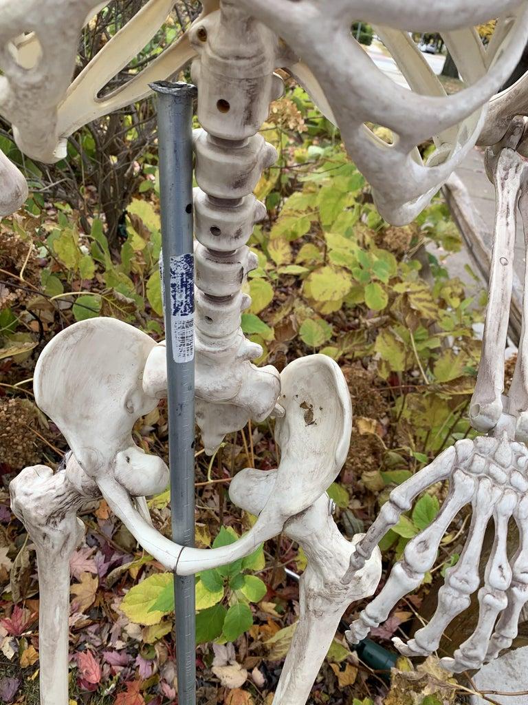 Setting Up the Skeletons Waiter