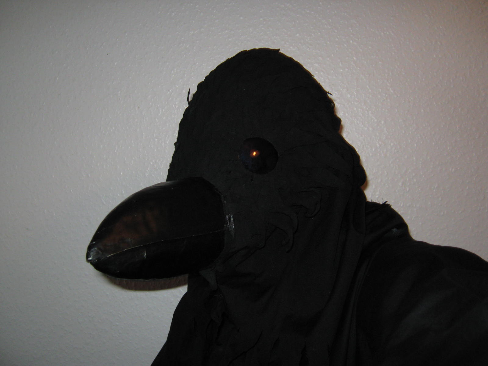 How to make a Corvid costume