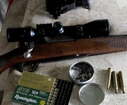 How to Hunt With an Airgun Pellet From a Centerfire Rifle