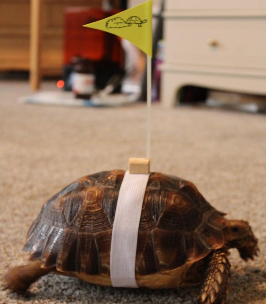 Wandering Tortoise Flag