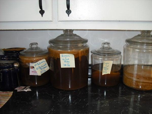How to Brew Kombucha.