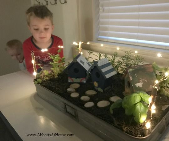 DIY Indoor Herb or Fairy Garden With Mini LED Lights