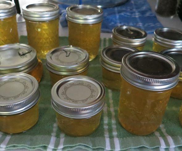 Lemon Honey Jelly