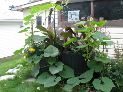 Triple Compost Bin... My Other Ones...