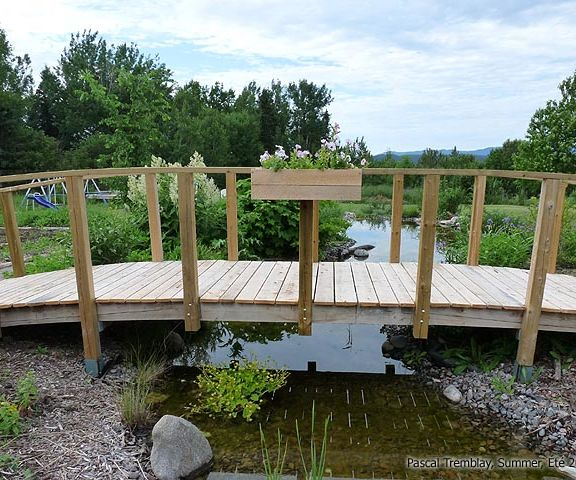 Garden Bridge - DIY Wooden Arched Backyard Bridge