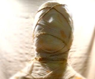 DIY Partable & Portable Mummy