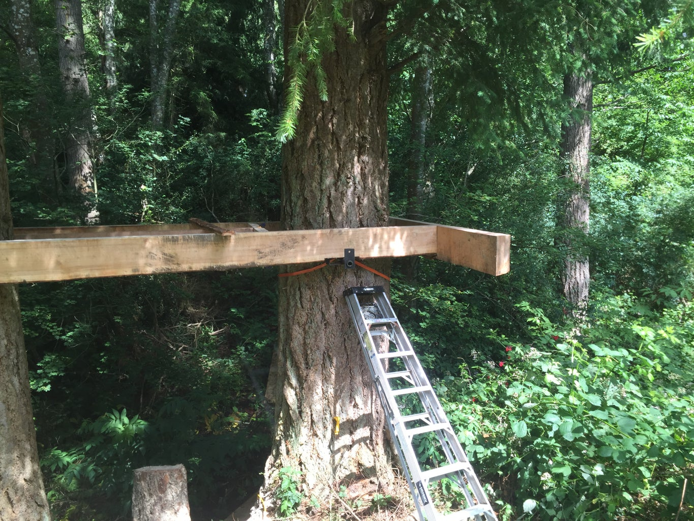 Timber Frame Foundation