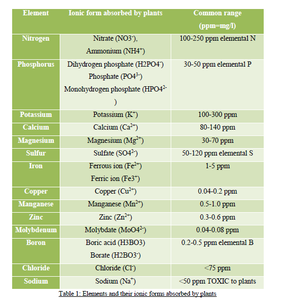 TAKE CARE OF NUTRIENT PH AND PPM With THE HELP OF METER