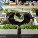 ShapeCrete :: Hypertufa / Concrete Planters for Teance Tea Shop