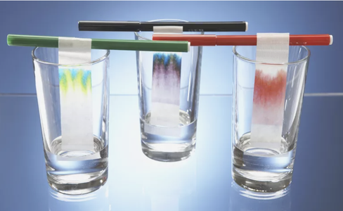 Extension Activity: Paper Chromatography