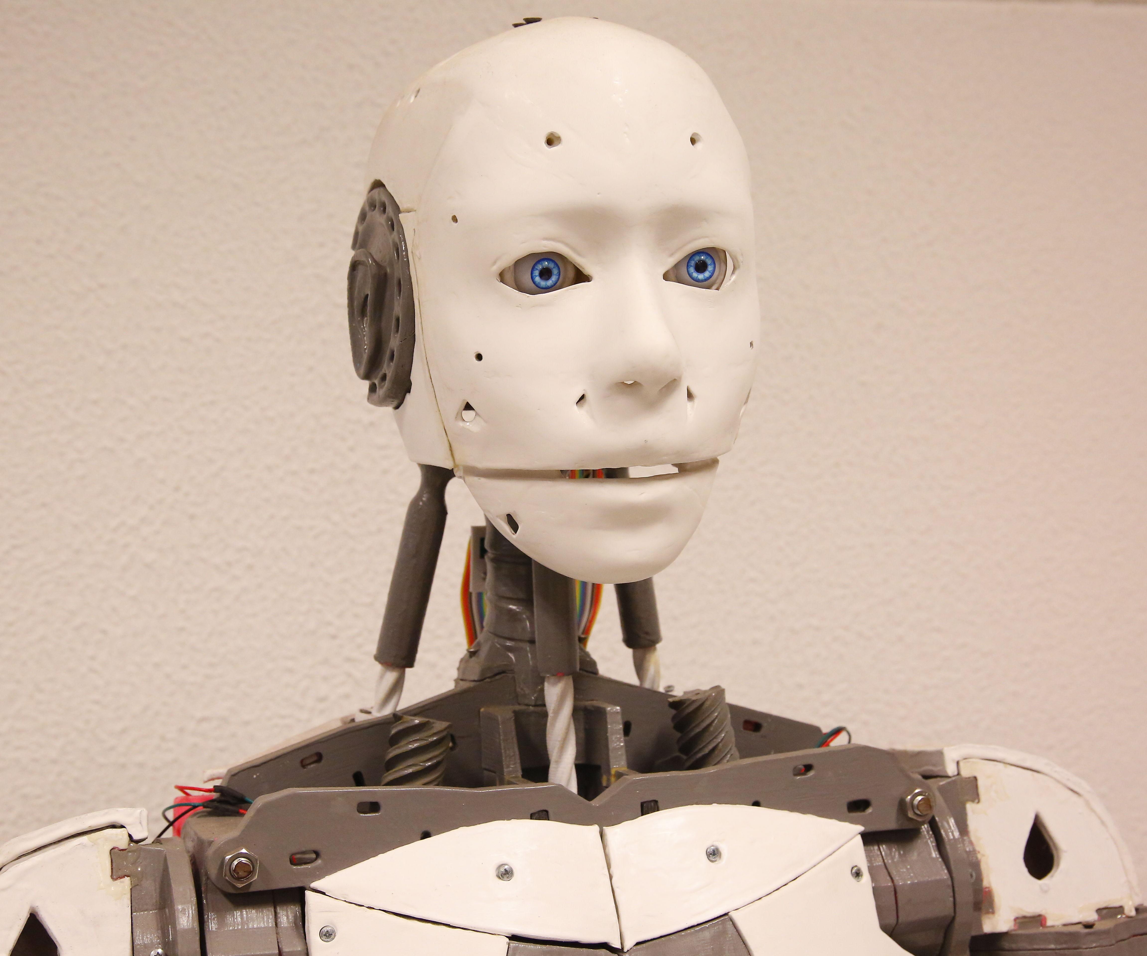 3D Printed Humanoid Robot - InMoov (My Photo Build)