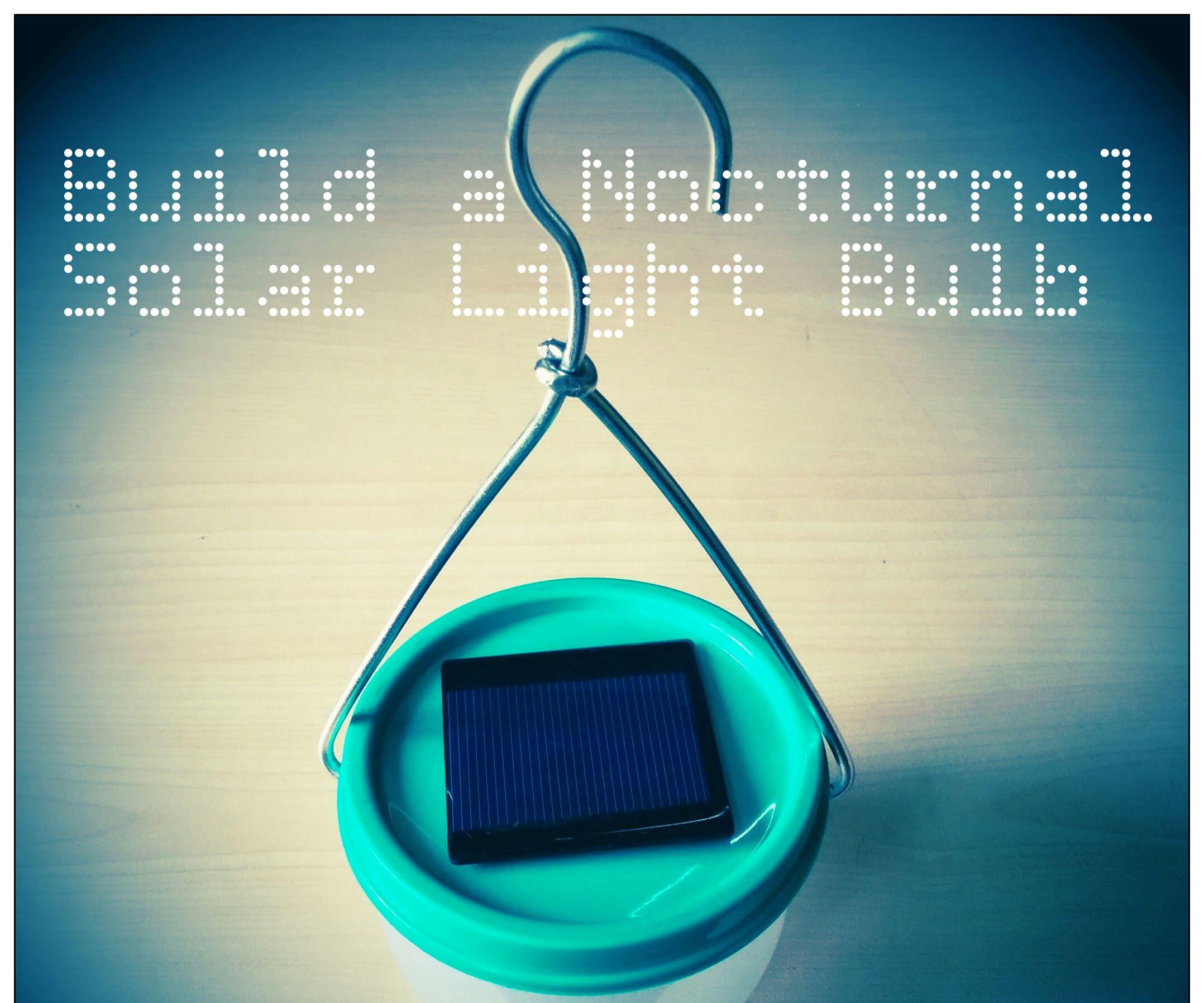 BUILD A NOCTURNAL SOLAR LIGHT BULB