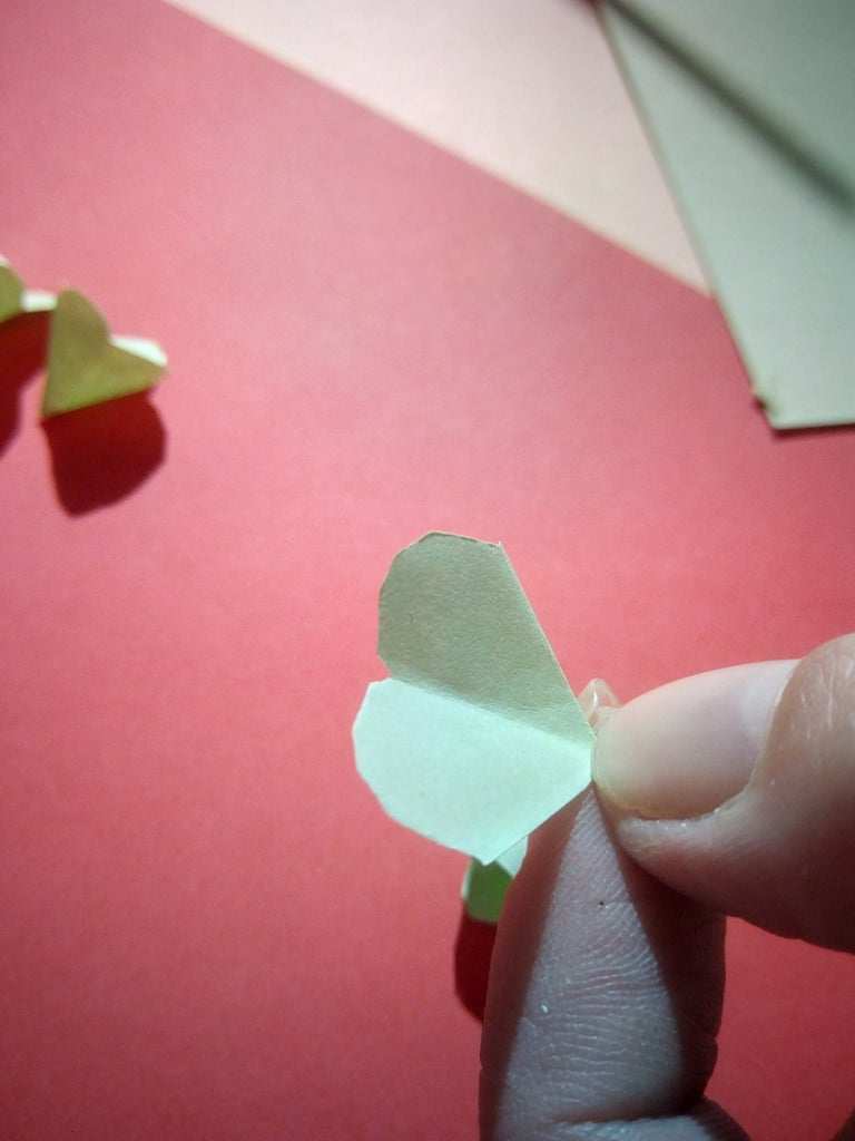 Sectioning and Cutting of the Petals
