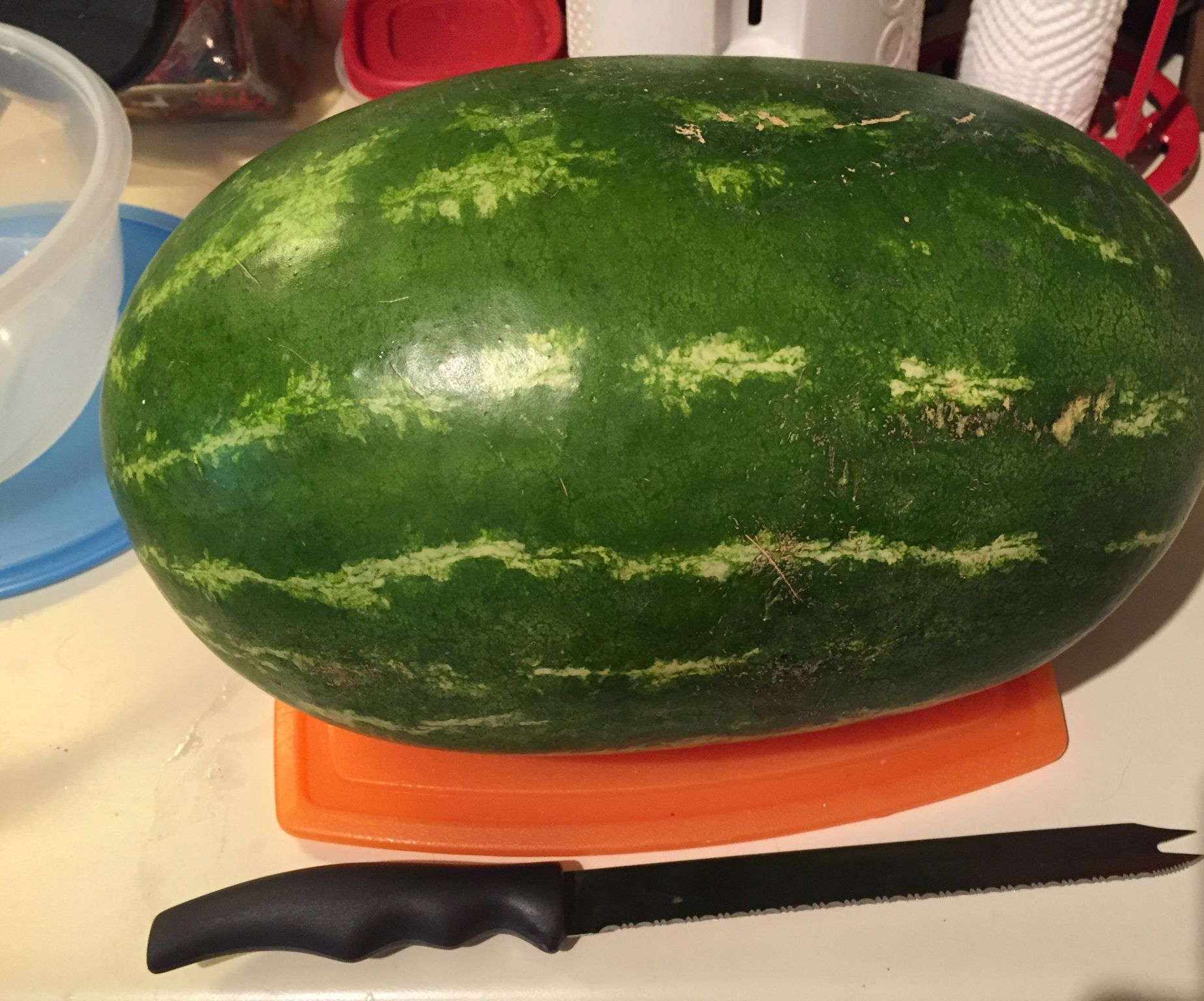 How to cut Watermelon without a mess!