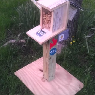 Bird Proof Squirrel Feeder & Solar Powered Camera