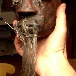 shrunken head hairless.JPG