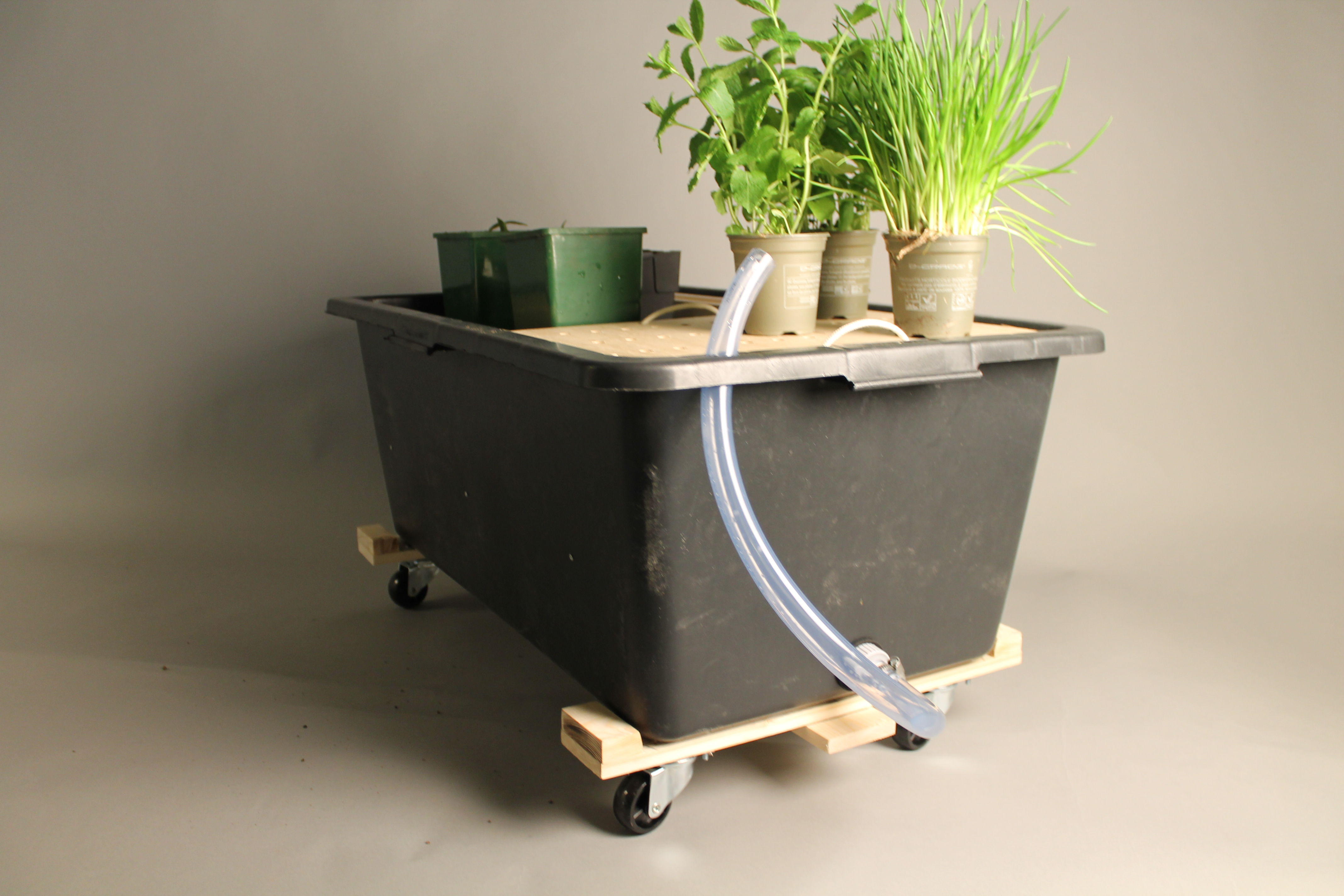 Self watering bin