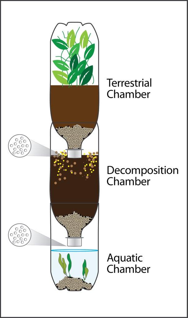 Eco-Column