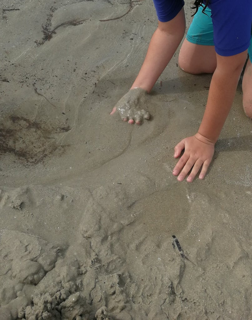Step 1: Gather Your Sand