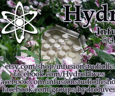 Hydro Hive