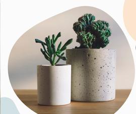 Casting Plaster-plant Pot