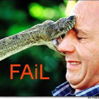 snakefacefail.jpg