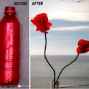 Flowers Out of Recycled Plastic Bottles. Before and After