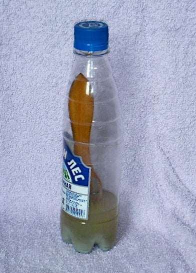 Plastic Bottle to Keep a Wet Paint Brush