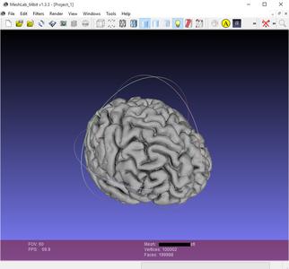 3D Print Your Brain