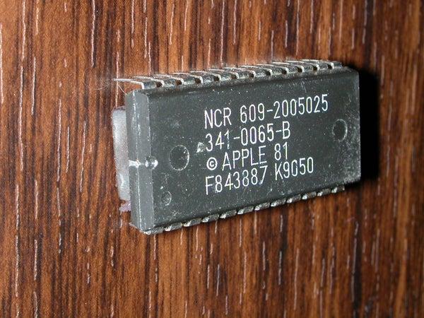 IC Refrigerator Bug