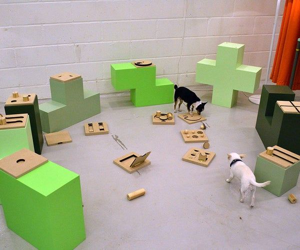 A Hybrid Digital and Physical Game for Dogs and Humans