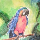Realistic Watercolor Macaw