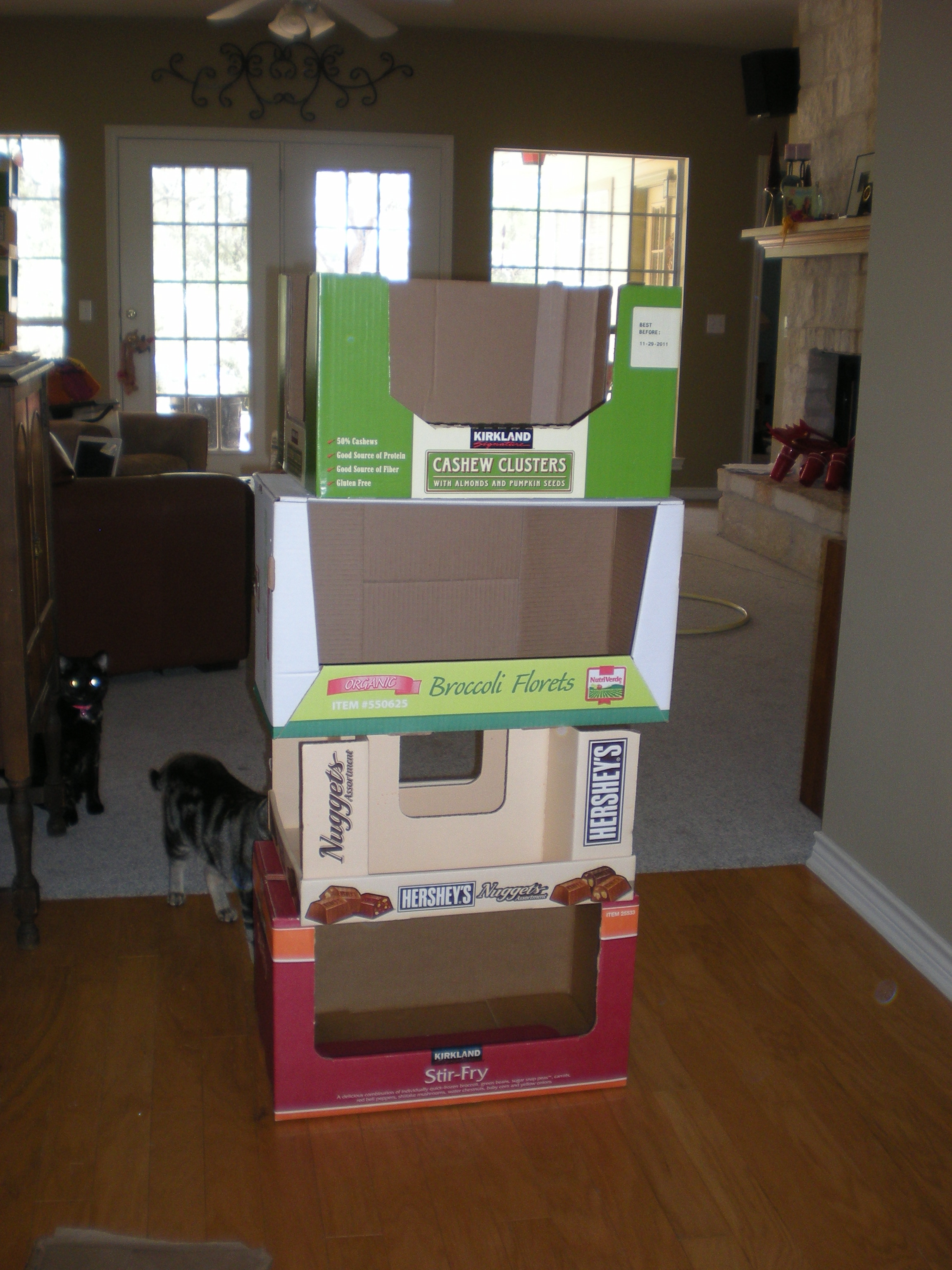 5 Minute Recycled Cardboard Kitty Condo 3 Steps Instructables