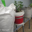 Rework the Function of PVC Pipes and Make Your Own Pot Stand
