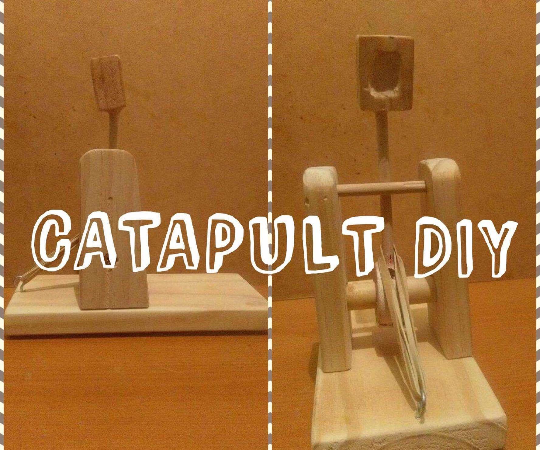 DIY Wooden Catapult
