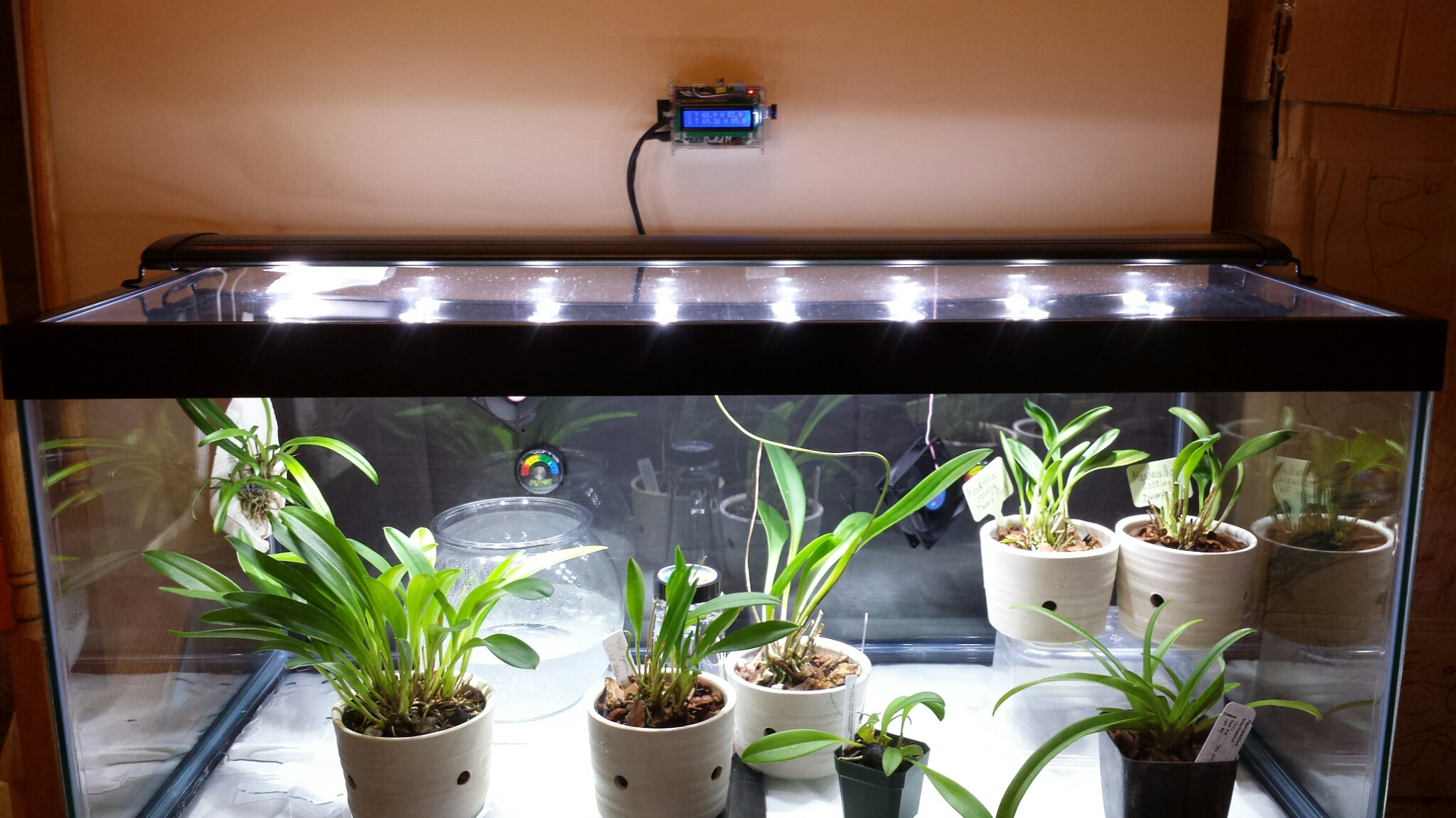 Plant Micro Climate