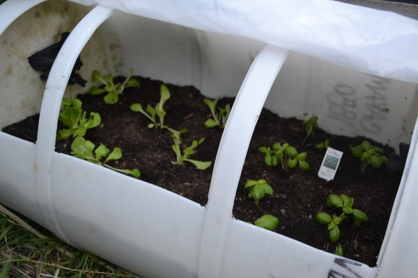 ❦PORTABLE CAN GREENHOUSE❦ (economic, Ecologic, Fast, Easy)