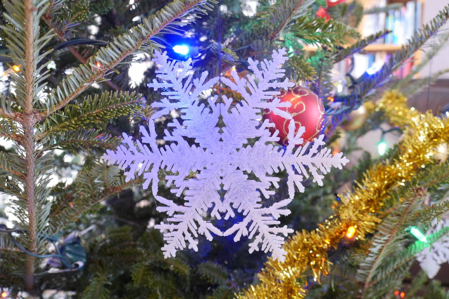 3D Printed Simulated Snowflakes
