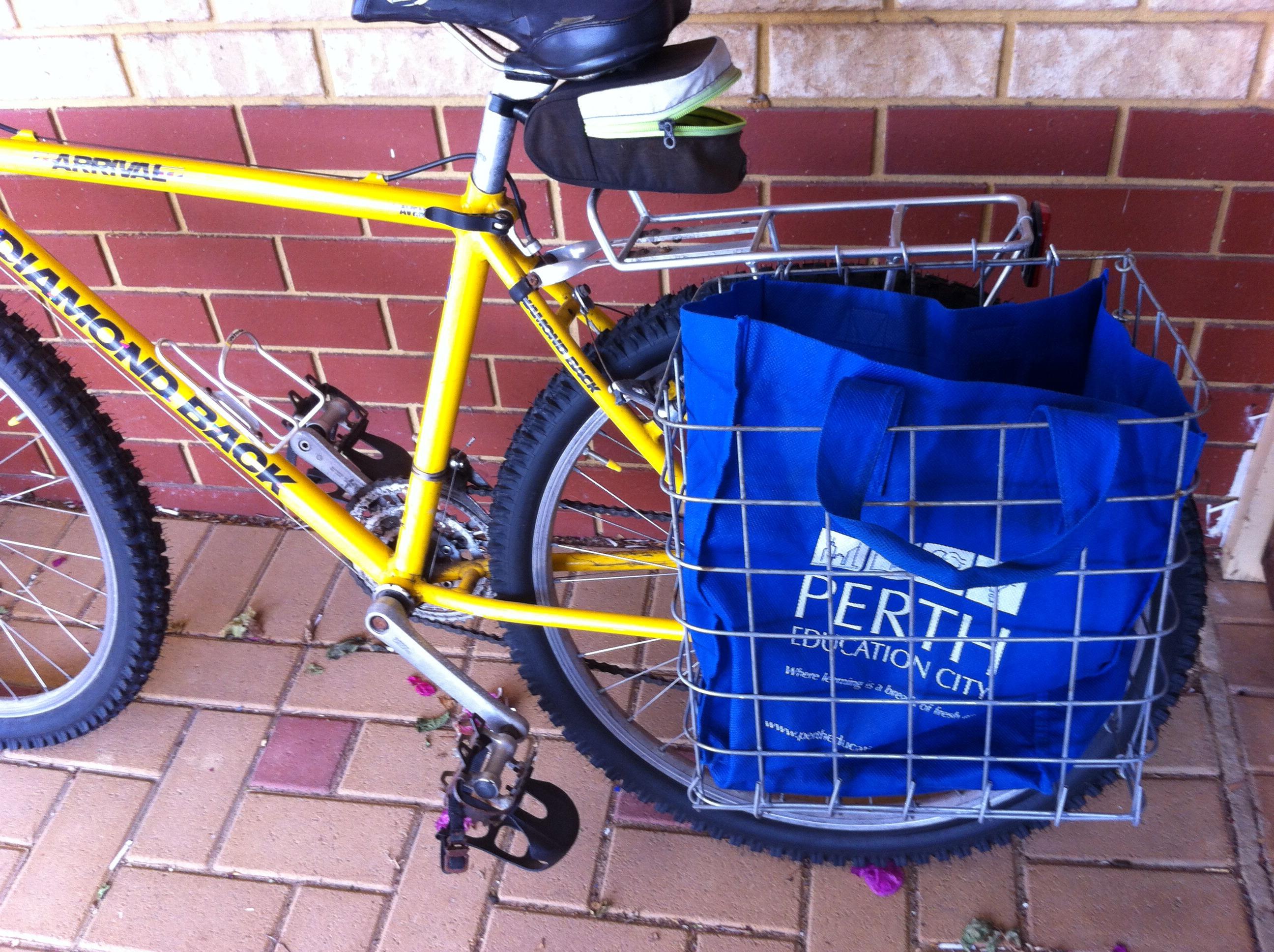 Wire Frame Bike Pannier