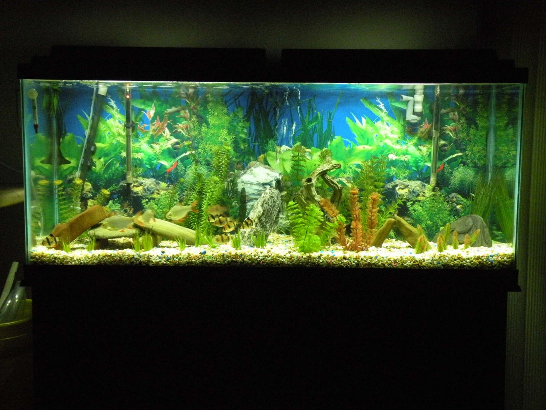 LED Aquarium Moonlights