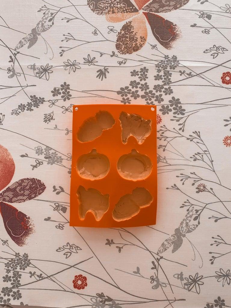 Transfer Into the Silicone Mold