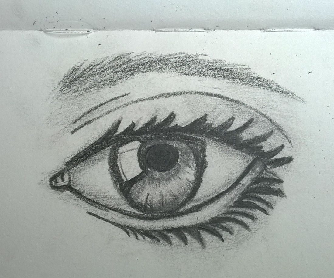 How to Draw a Realistic Eye in 6 Steps
