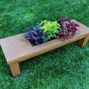 Coffee Table Planter